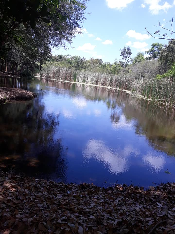 Laguna Prieta. (Fuente externa)