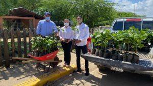 (VIDEO) Albadom reforesta y entrega cientos de plantas de café