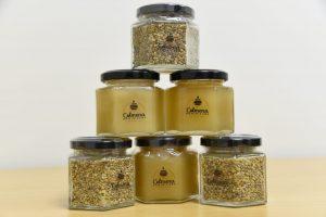 Agricultura y demás entidades presentan campaña de promoción de la miel de abeja