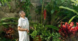 """Perfume de Gardenias"", comedia negra inspirada en funerales de Puerto Rico Nora Quintanilla"