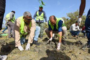 Medio Ambiente insta a la población a cuidar manglares por sus beneficios