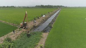 Indrhi proyecta obras para impulsar producción de arroz en Bajo Yuna