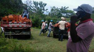 Senpa incauta 1,100 pies de madera caoba criolla en Puerto Plata