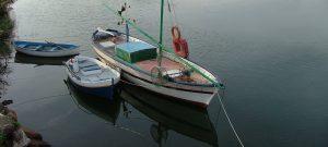 COE levanta restricciones a frágiles embarcaciones