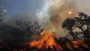 Costa Rica y Canadá atenderán conjuntamente incendios forestales