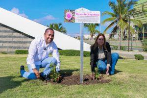 """Autoridades promueven la Flor Nacional """"Rosa de Bayahíbe"""" en aeropuertos del país"""