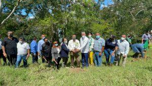 Plan Sierra inicia la restructuración boscosa del área de amortiguamiento de la presa Tavera-Bao