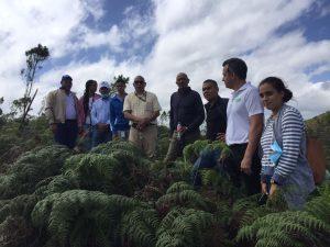 Egehid y COAJA inspeccionan programa de reforestación ríos Yaque del Norte y Jimenoa